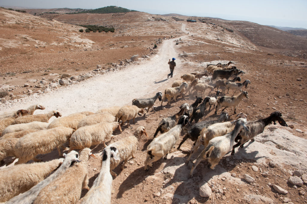 """Every land belongs to God"": Hope for land ownership conflicts in the Holy Land"