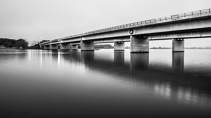 The Bridge to Life