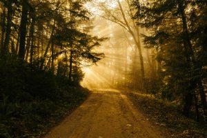 path, gospel, faith, ministry
