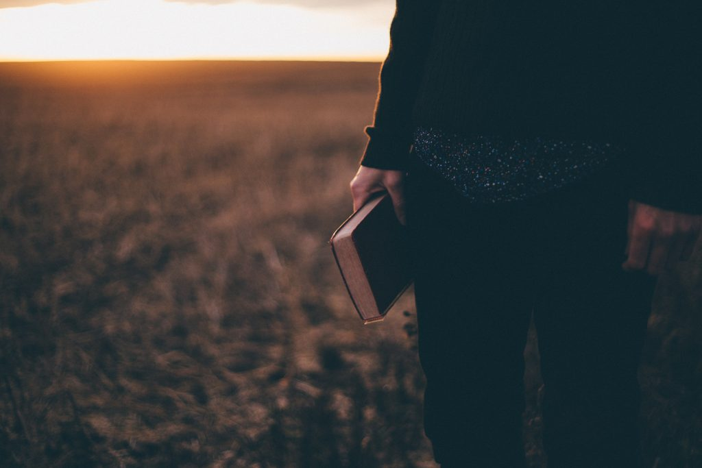 bible, hands, field, woman