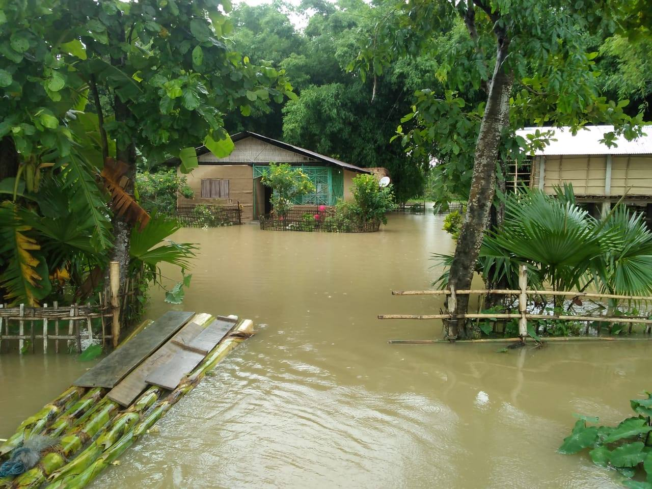 Flooding devastates Assam in Northeastern India