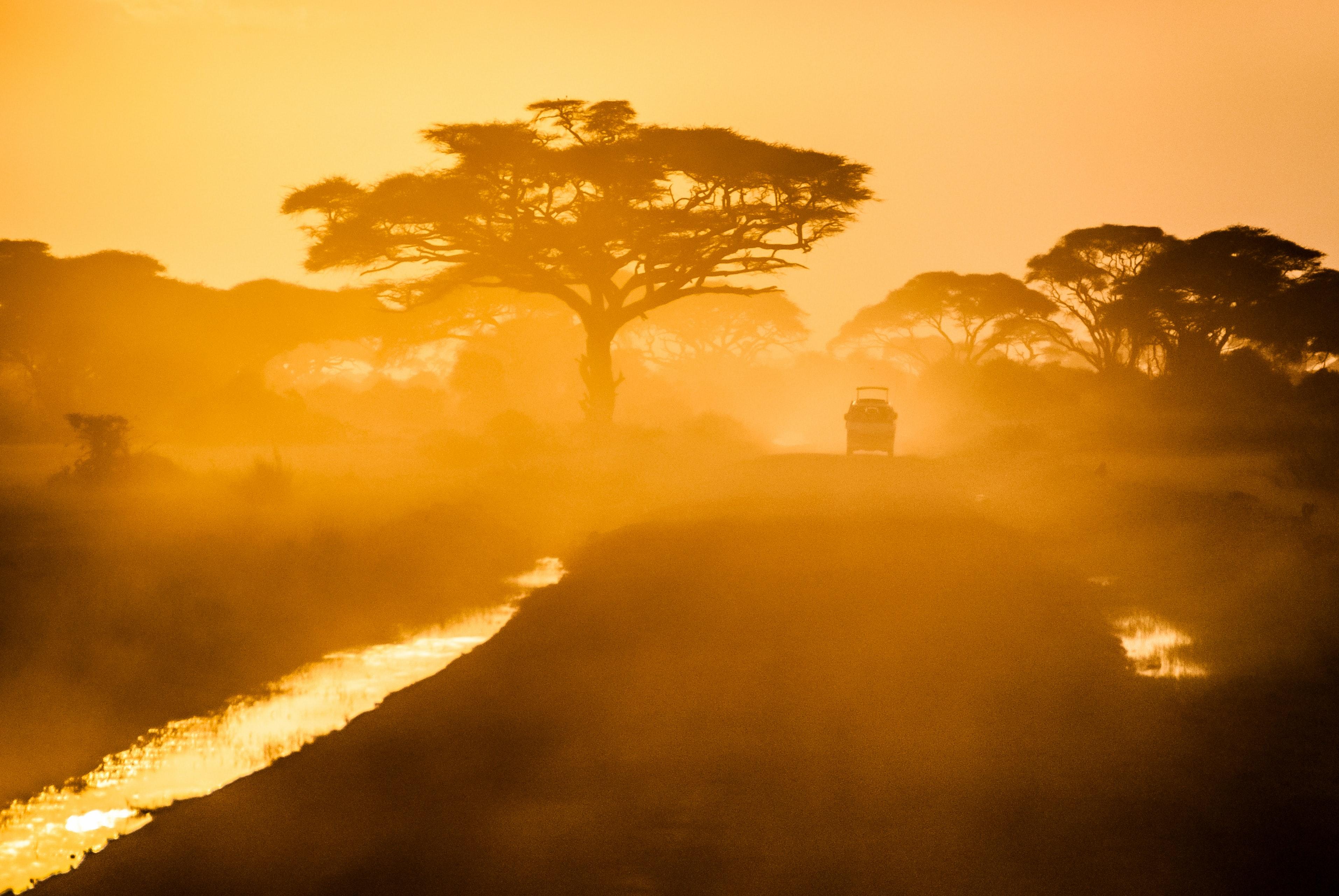 africa, van