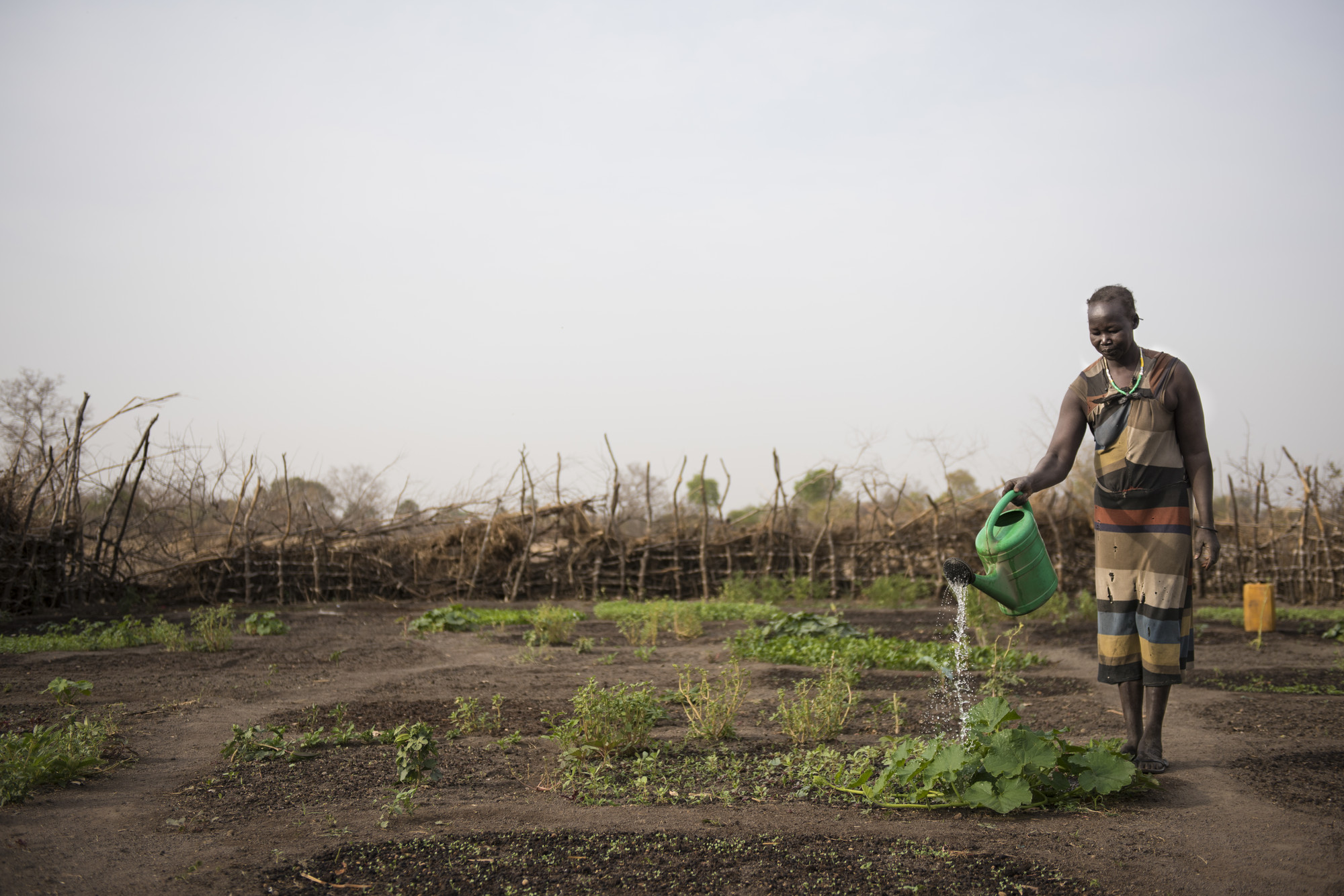 Believers feed the hungry as South Sudan braces for famine