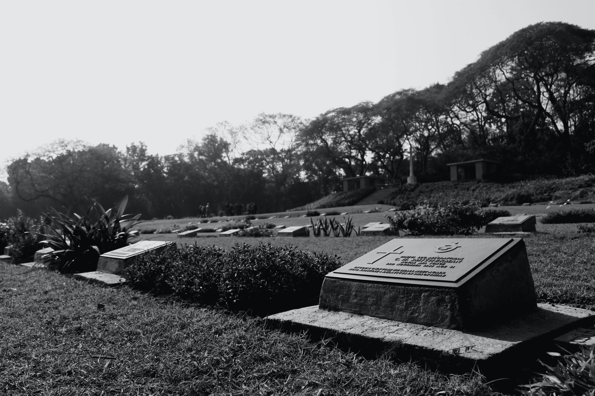 """Rest in peace: """"we need a graveyard"""""""