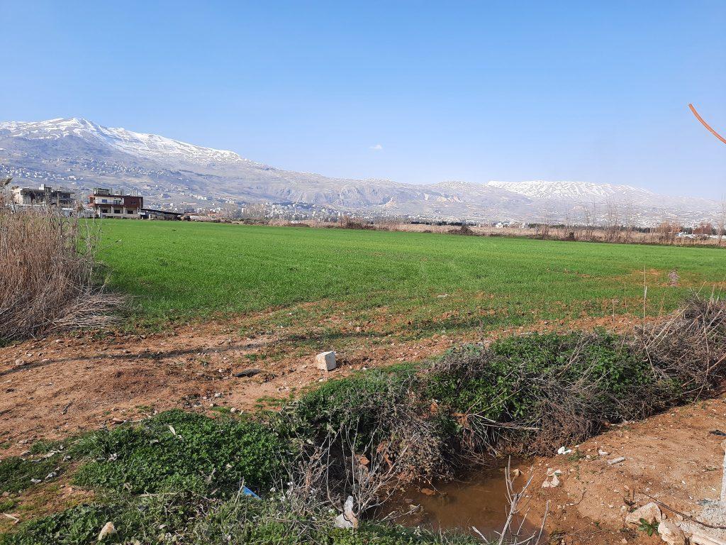 Horizons International Buys Farmland in Lebanon Bring Sustainable Help
