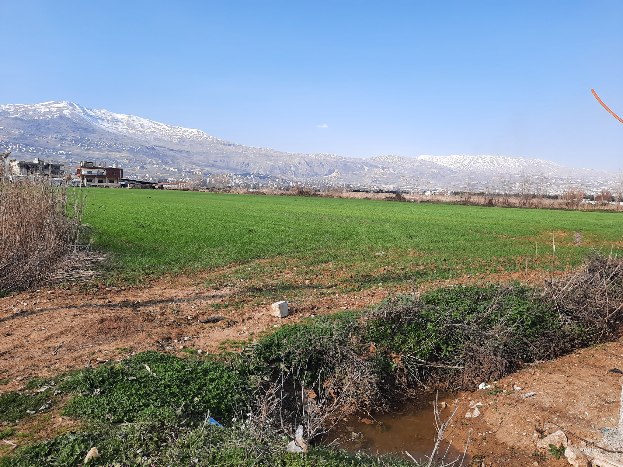 Horizons International buys farmland in Lebanon